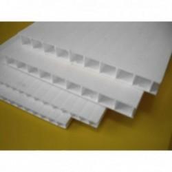 Płyta z polipropylenu komorowego biała 5 mm - 200x600 cm